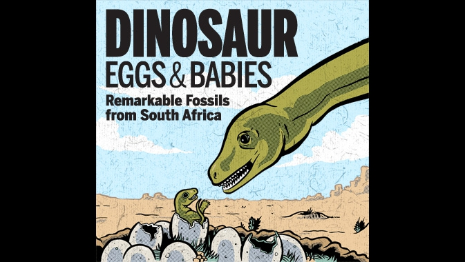 Dinosaur Eggs and Babies: Remarkable Fossils from South Africa