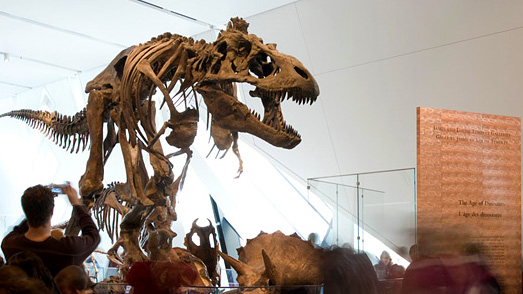 James and Louise Temerty Galleries of the Age of Dinosaurs
