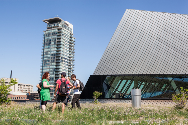 researchers and students stand on the ROM green roof to discuss their data collection
