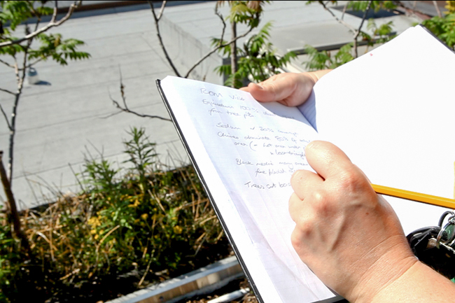 a person writes research notes into a notebook on the ROM green roof