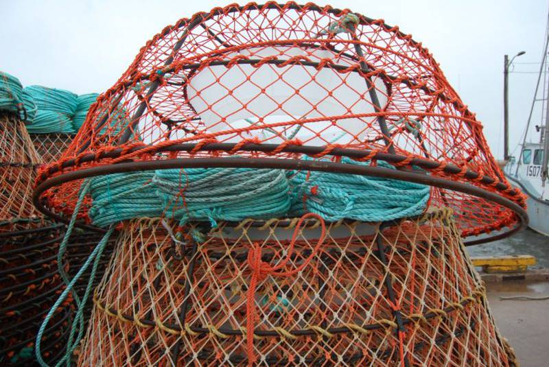 Circular netted crab pots used to capture snow crab