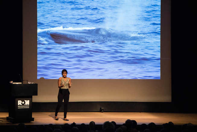 Asha De Vos gives an enthusiastic talk about whale poop at the Royal Ontario Museum. Photo Credit: Meghan Callon