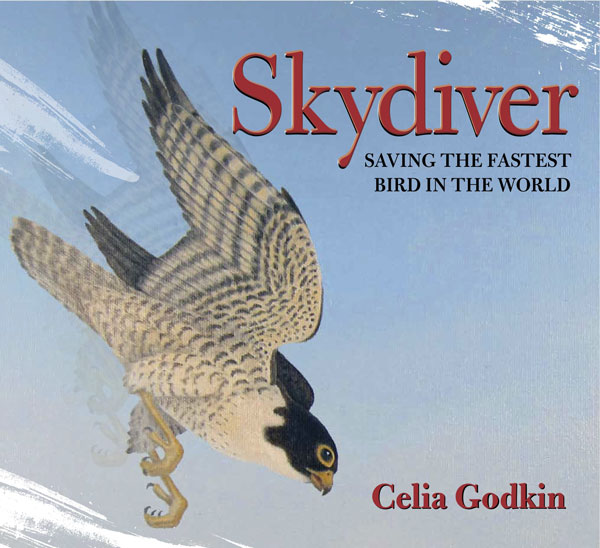 "The cover of ""Skydiver: Saving the Fastest Bird in World"", featuring a Peregrine falcon in flight"