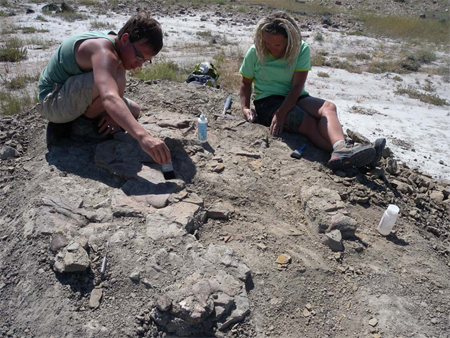Two students brush and chisel dirt away as they uncover the last of the bones before closing the quarry for the season.