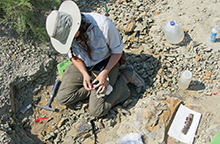 Photograph of female archaeologist