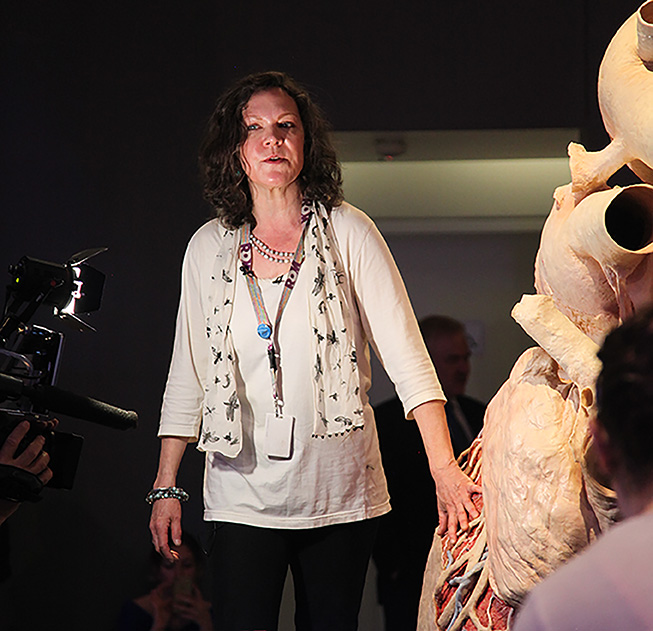 Jacqui talks to the media about the blue whale heart after its installation in the ROM's exhibition. Photo by Fennella Hood