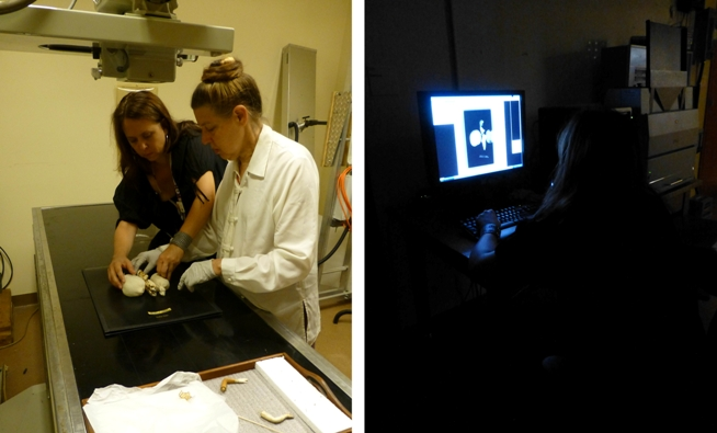 In the ROM X-ray lab with Heidi Sobol & Julia