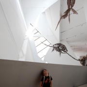 Tiny Times visits the ROM