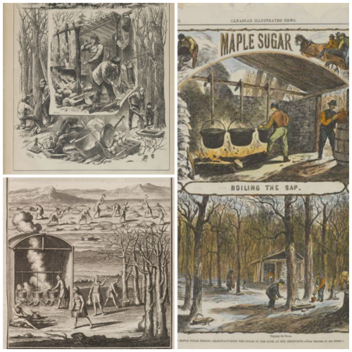 Maple Sugaring Historic Newspaper Illustrations, ROM2007_9376_1.jpg, ROM2007_9376_2.jpg,  ROM2006_7196_7.jpg