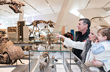 A photo of a family looking at fossils in the Reed Gallery of the Age of Mammals