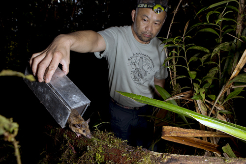 Burton Lim releasing a rat he captured in the jungle.