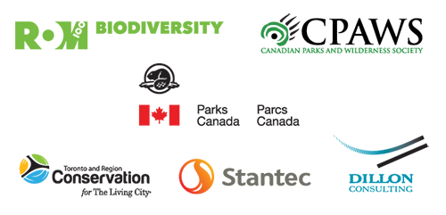 partner logos for the 2014 Road Ecology including ROM Biodiversity, Canadian Parks and Wilderness Society, Parks Canada, Toronto Region Conservation Authority, Stantec Inc, and Dillon Consulting