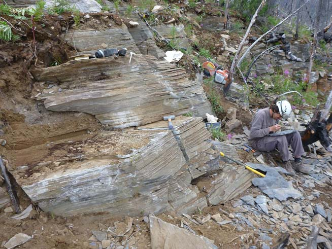 Quarry site showing fossiliferous layers. Diego Balseiro, a field volunteer from Argentina, is labeling fossils.