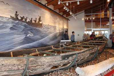 An excavated 17th century Basque whaling boat (Chalupa) from Red Bay, Labrador on the Strait of Belle Isle, a heavily trafficked whale migration path. Photo by Katherine Ing
