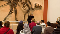 Teachers come to the ROM to learn from the collections and how they support Ontario Curriculum