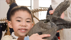 A student visitor holds a fossil during one of the hands-on activities offered by ROM Learning.