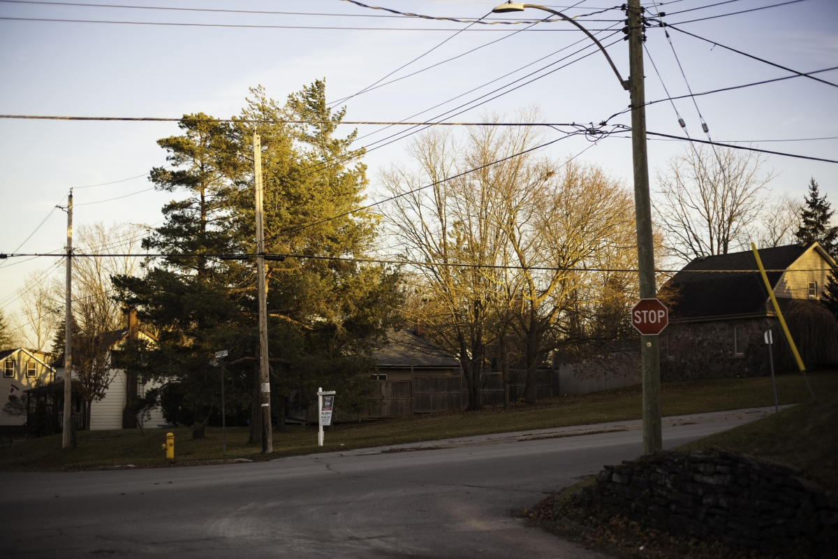 Residential street corner with telephone poles and large mature trees