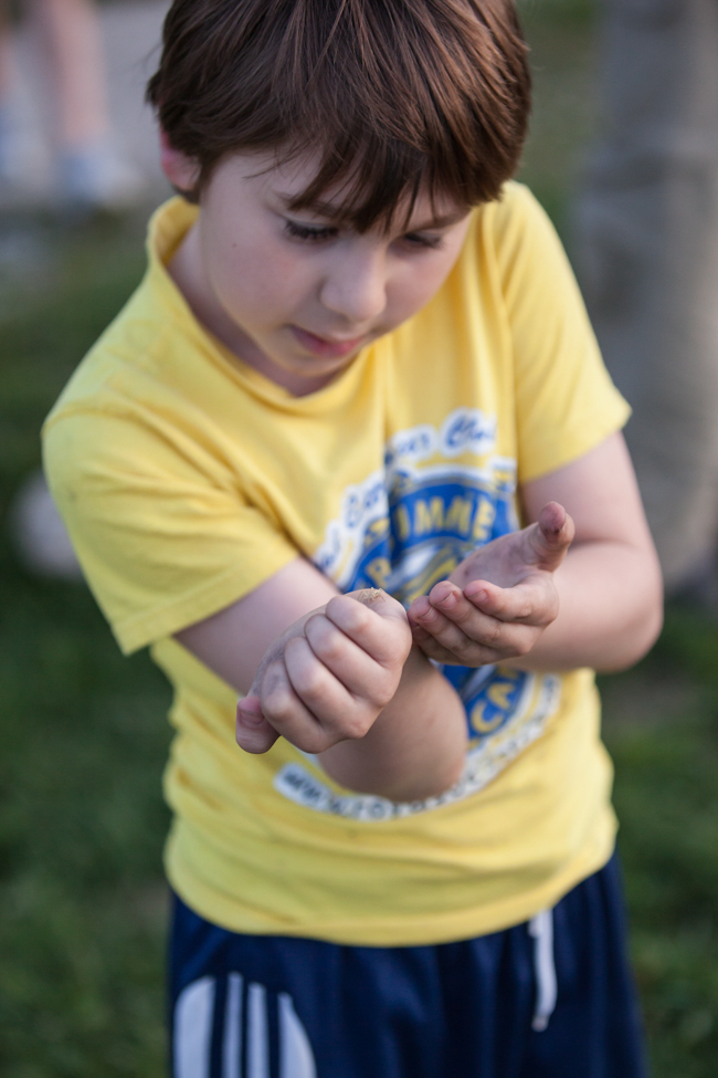 a young boy gently allows a spider to crawl across his hands