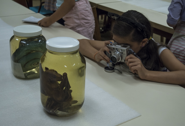 A young girl takes a photo of a snake preserved in a jar.