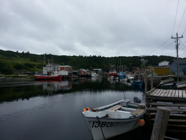 Trout River, Newfoundland. Photo by Katherine Ing