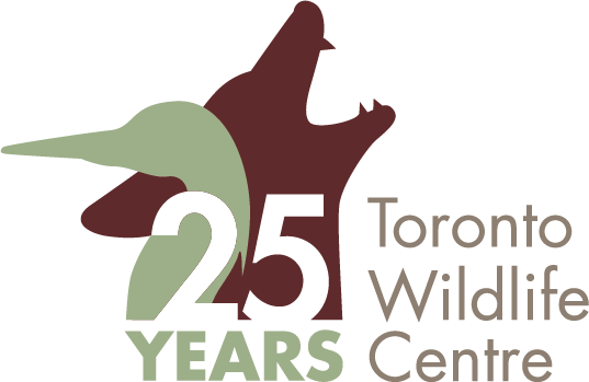 Toronto Wildlife Centre 25 years logo