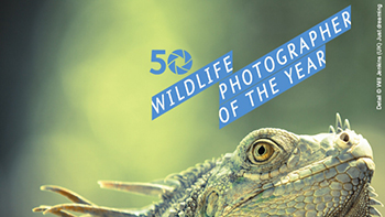 Wildlife Photographer of the Year - great nature photography in Toronto