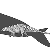 Illustration of Zuul next to a blue whale silhouette