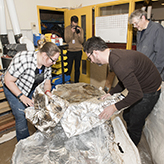 Photo of three people removing foil from a fossil specimen