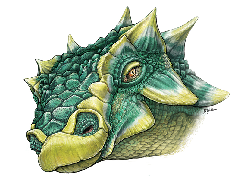 Illustration of Zuul's head