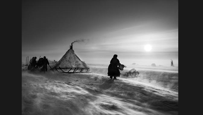 Lorsque le temps est épouvantable, les Nénètses et leur troupeau peuvent rester plusieurs jours au même endroit. Nord de l'Ob. Cercle arctique, péninsule de Yamal, Sibérie, Russie. 2011. © Sebastião Salgado. Avec l'aimable autorisation d'Amazonas images