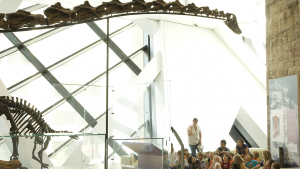 A class sits beneath a long-necked dinosaur