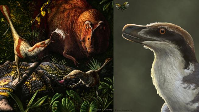 Illustrations of dinosaurs in landscape.