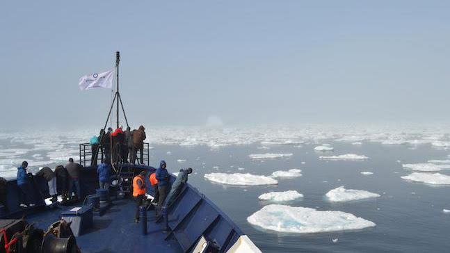 A view over ice floes in the Arctic Ocean from the bow of a Students On Ice Boat in 2011. Photo by Mary Paquet