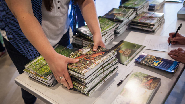 A volunteer gathers a stack of Toronto Biodiversity Series books on a table
