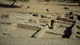 Excavation scene at Meroe, Sudan, Africa, 2001