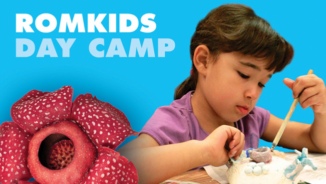 ROMkids Day Camp