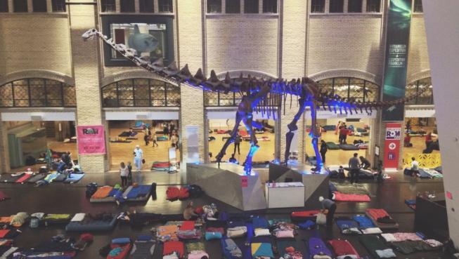 Photo of sleeping bags underneath a dinosaur
