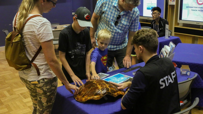 Photo of a family looking at a tortoise shell