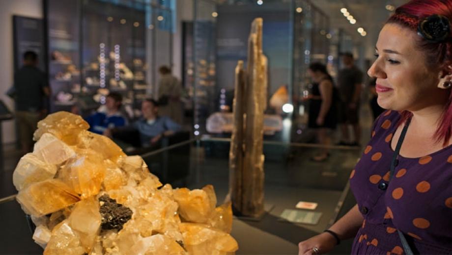 Teck Suite of Galleries: Earth's Treasures