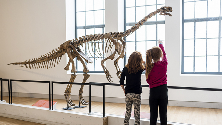 Photo of two girls looking at a dinosaur skeleton
