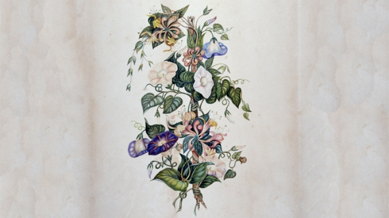 Watercolour painting of a bouquet of morning glory and honeysuckle flowers