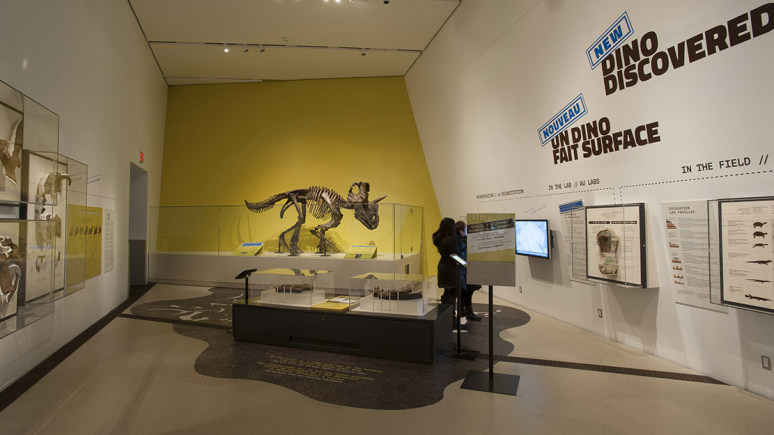 View of the exhibition at the Royal Ontario Museum with life-size mounted model.
