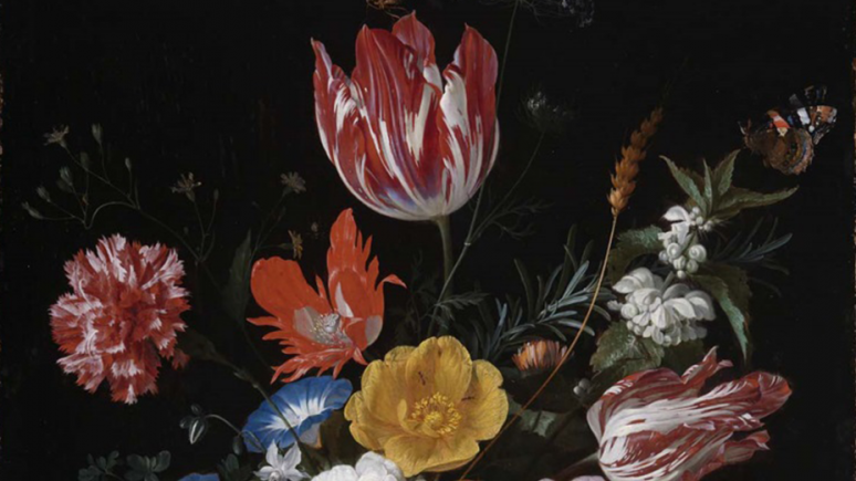In the Age of Rembrandt: Dutch Paintings from the Museum of Fine
