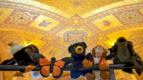 A collection of plush animals resting beneath the dome of the museum's rotunda.