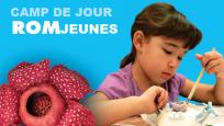 Montage photo sur fond bleu pâle : le logo Camp de jour ROMjeunes, une fleur rouge et une jeune fille travaillant à un projet d'art plastique.