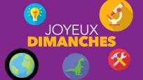 Les JOYEUX DIMANCHES du ROM