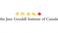 Icons from left to right above the logo in yellow: Jane Goodall's profile, chimpanzee walking, a leaf, hand, Canada's maple leaf in red