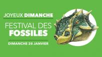 Joyeux dimanche : Festival des fossiles