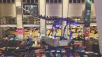 Photo de sacs à couchage et d'un dinosaure au ROM