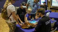 Des visiteurs interagissent avec des bénévoles du Musée et observent divers spécimens.